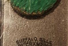 Rich Stadium (Buffalo) Piece of Turf